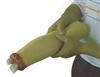 KAH/H2008上肢外伤断肢止血模型2