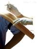 KAH-S6高级电子上臂肌肉注射训练模型2