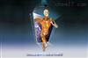 KAH-P902系统解剖3D虚拟教学系统