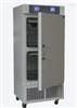 YWS400HS药品稳定性试验箱